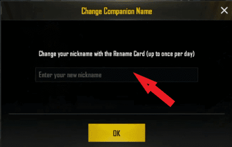 How to Rename PUBG Names for Boys 2021