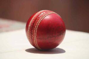 Top 3 Best Cricket Games